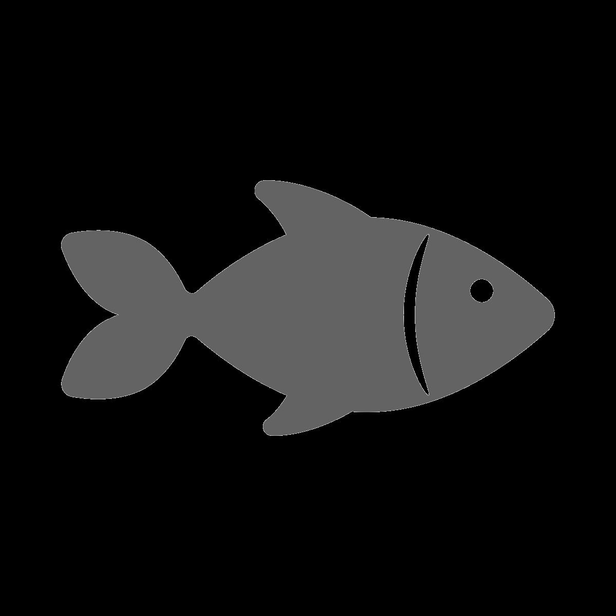 noun_Fish_1847789_646363