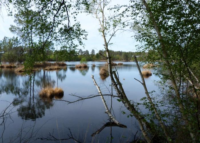 Lacs d'Hostens