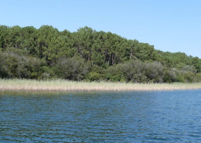 Lac de Cazaux-Sanguinet