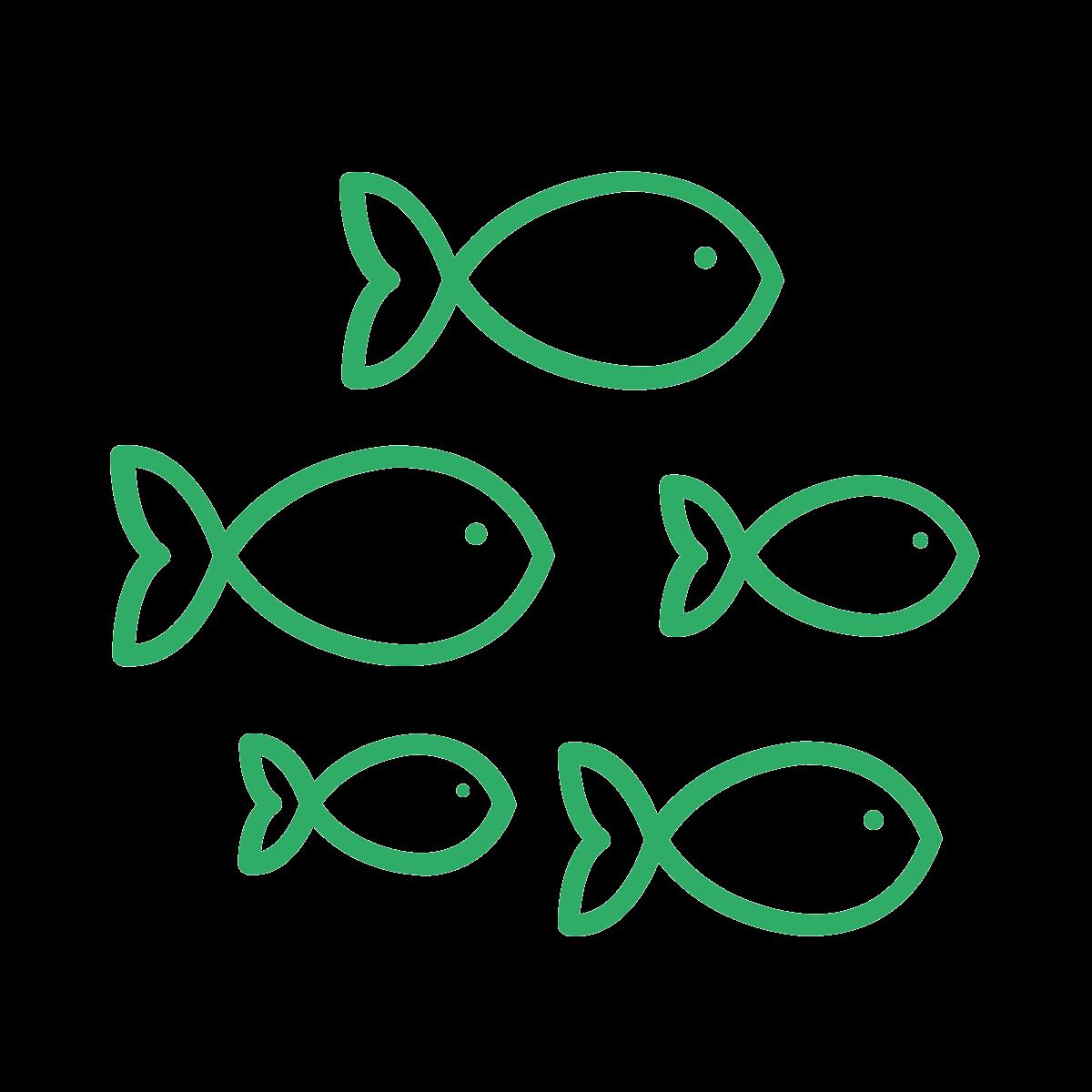 noun_Fish_886054_2fac66
