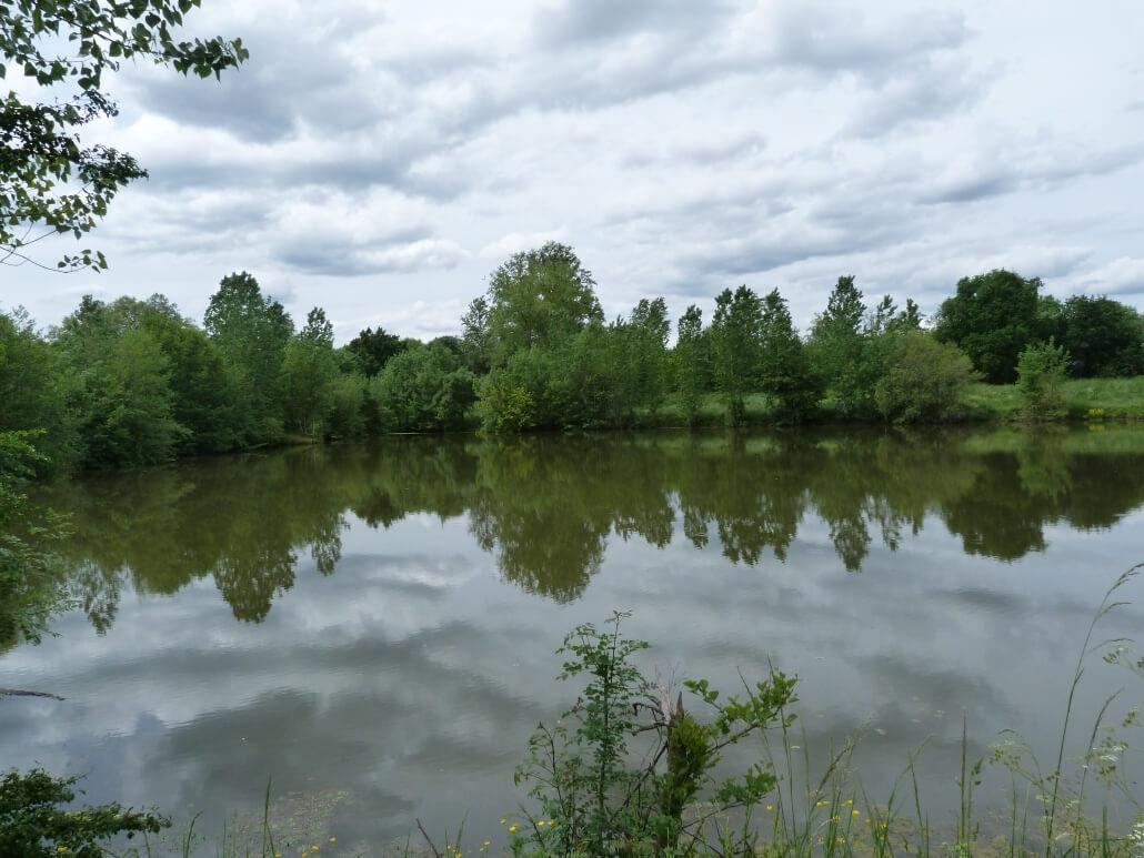 Spots lacs tangs sur le territoire sud gironde p che 33 for Acheter carpe pour etang