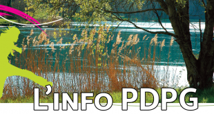 linfo-pdpg
