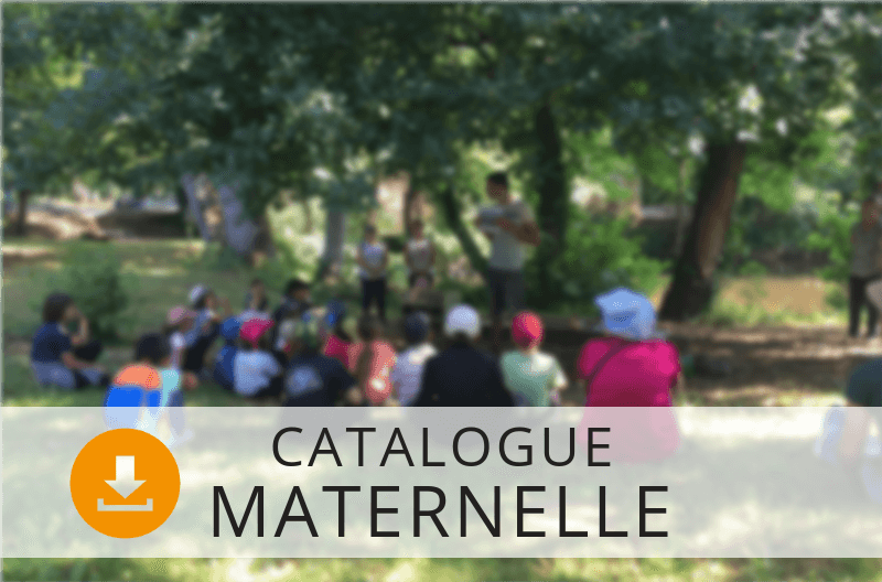 maternelle sortie