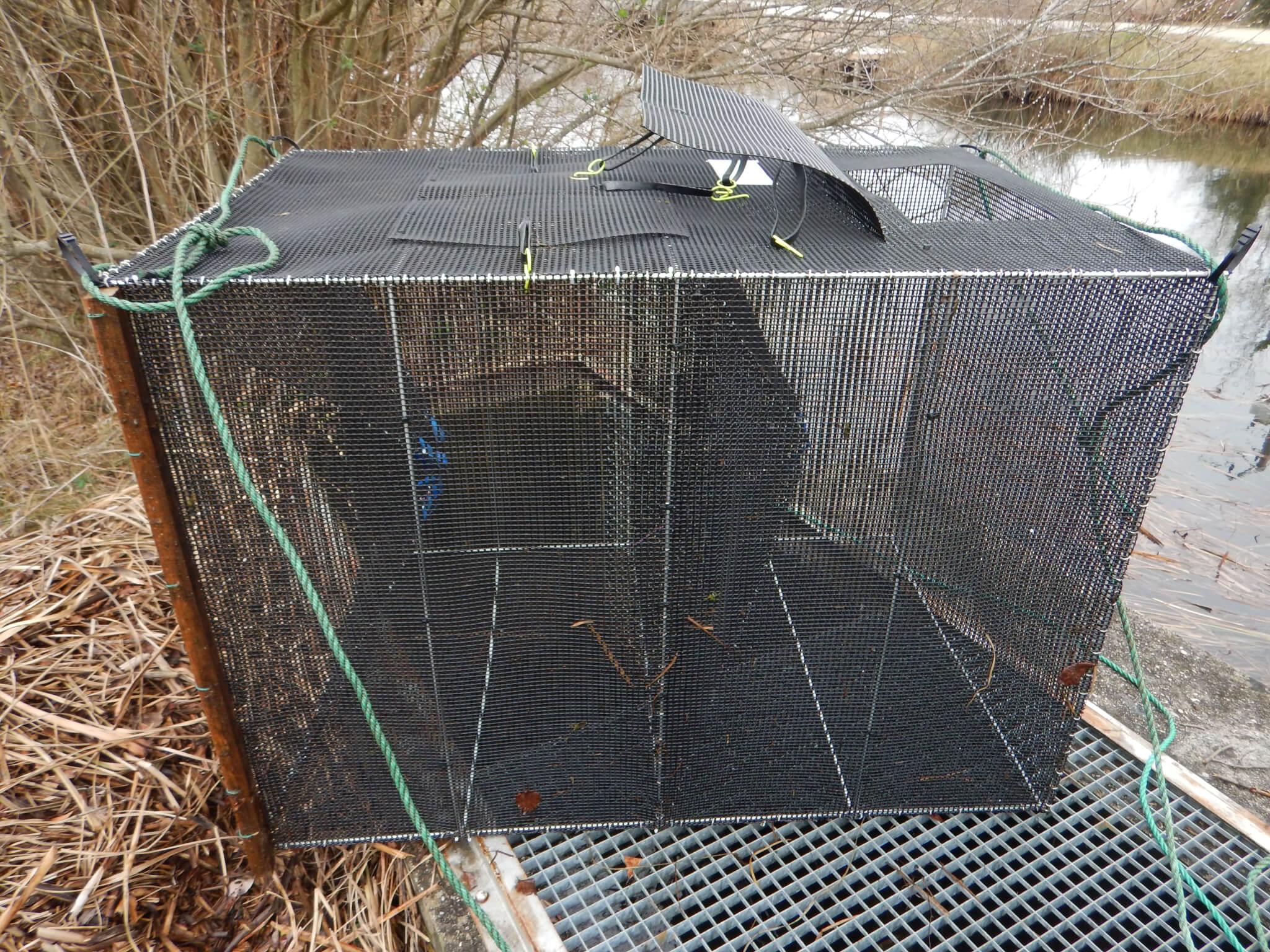Figure 3 : dispositif de piégeage de type nasse réalisé sur mesure pour la passe à poissons de l'écluse de Montaut