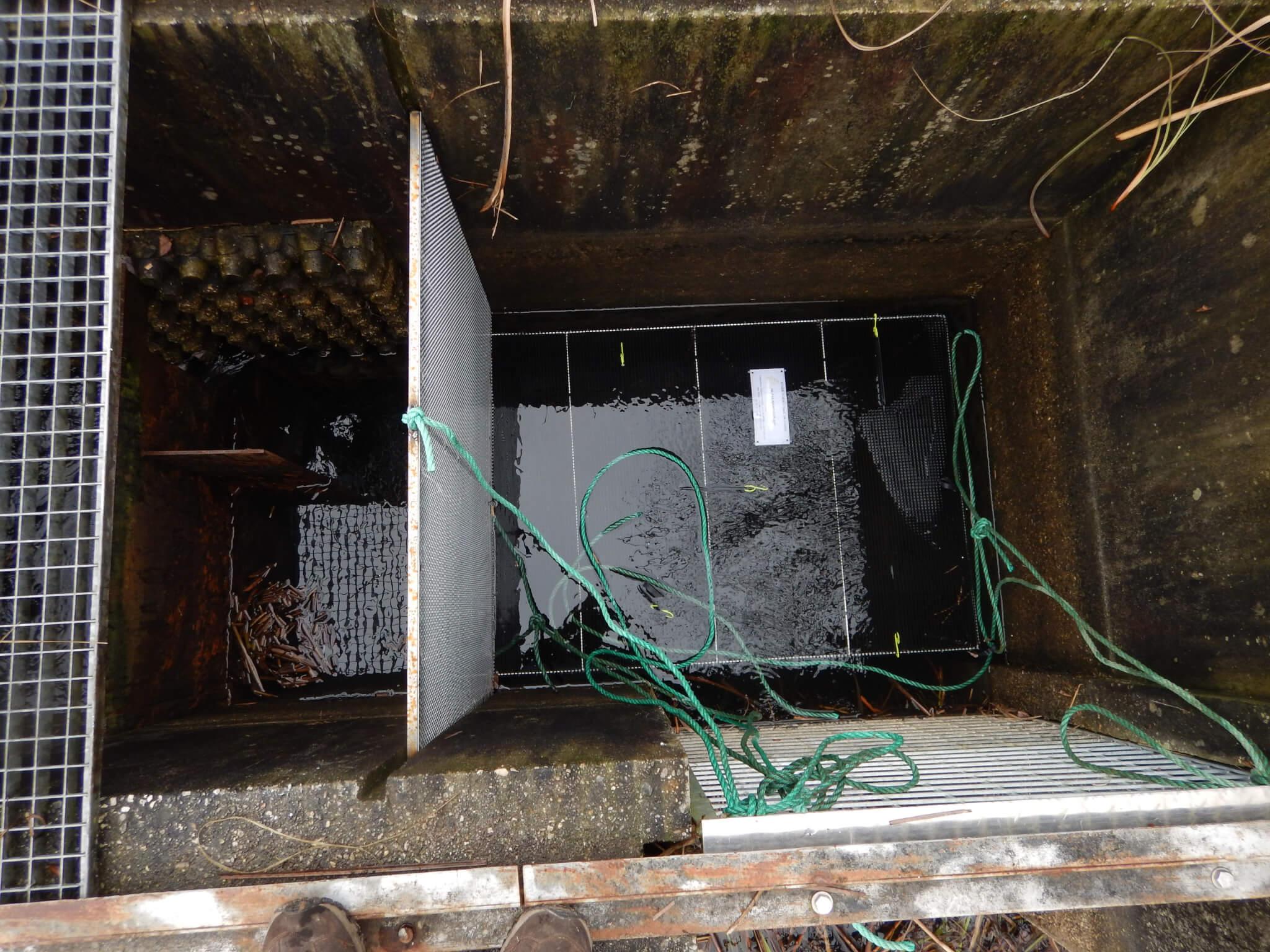 Figure 4 : dispositif de piégeage en position dans la passe à poisson de l'écluse de Montaut
