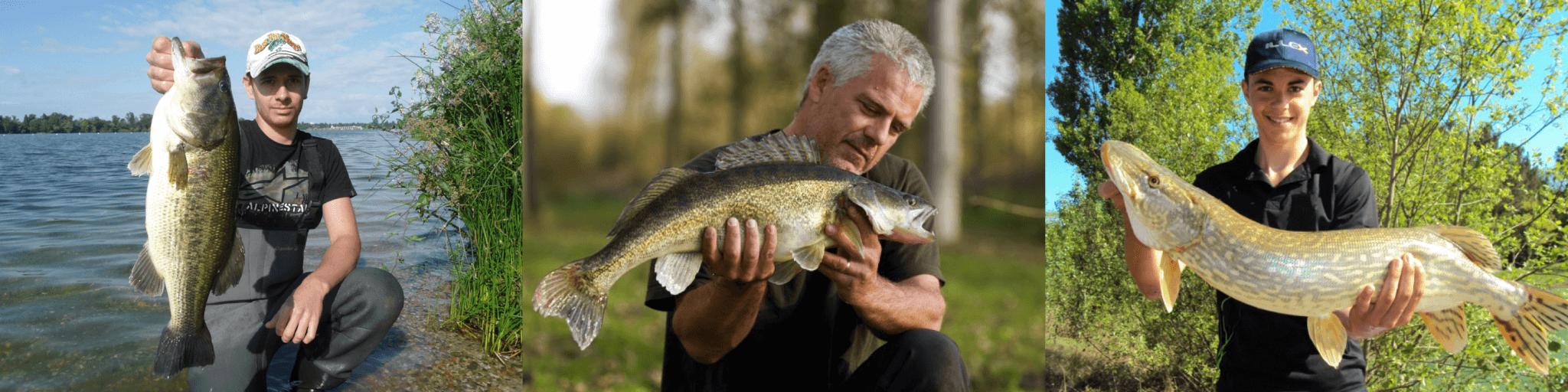 Pêcheurs_carnassier