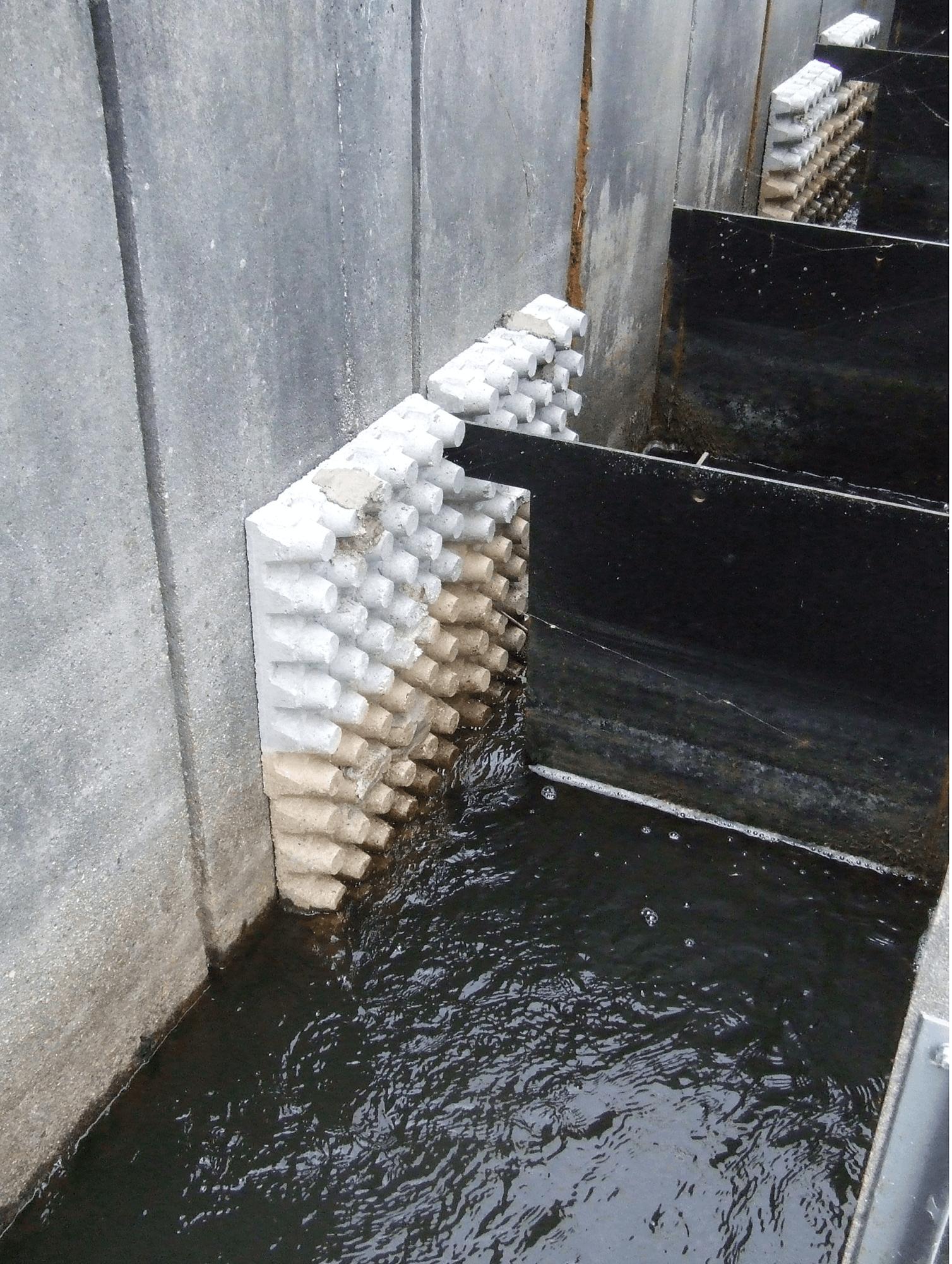 Figure 2 : dispositif de franchissement de l'écluse (passe à poissons) © SIAEBVELG