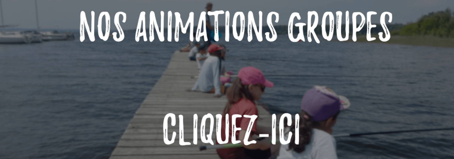 animation groupe