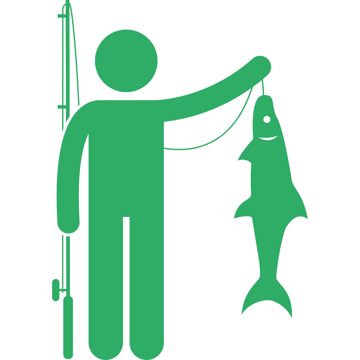 noun_Fishing_1245033_2fac66