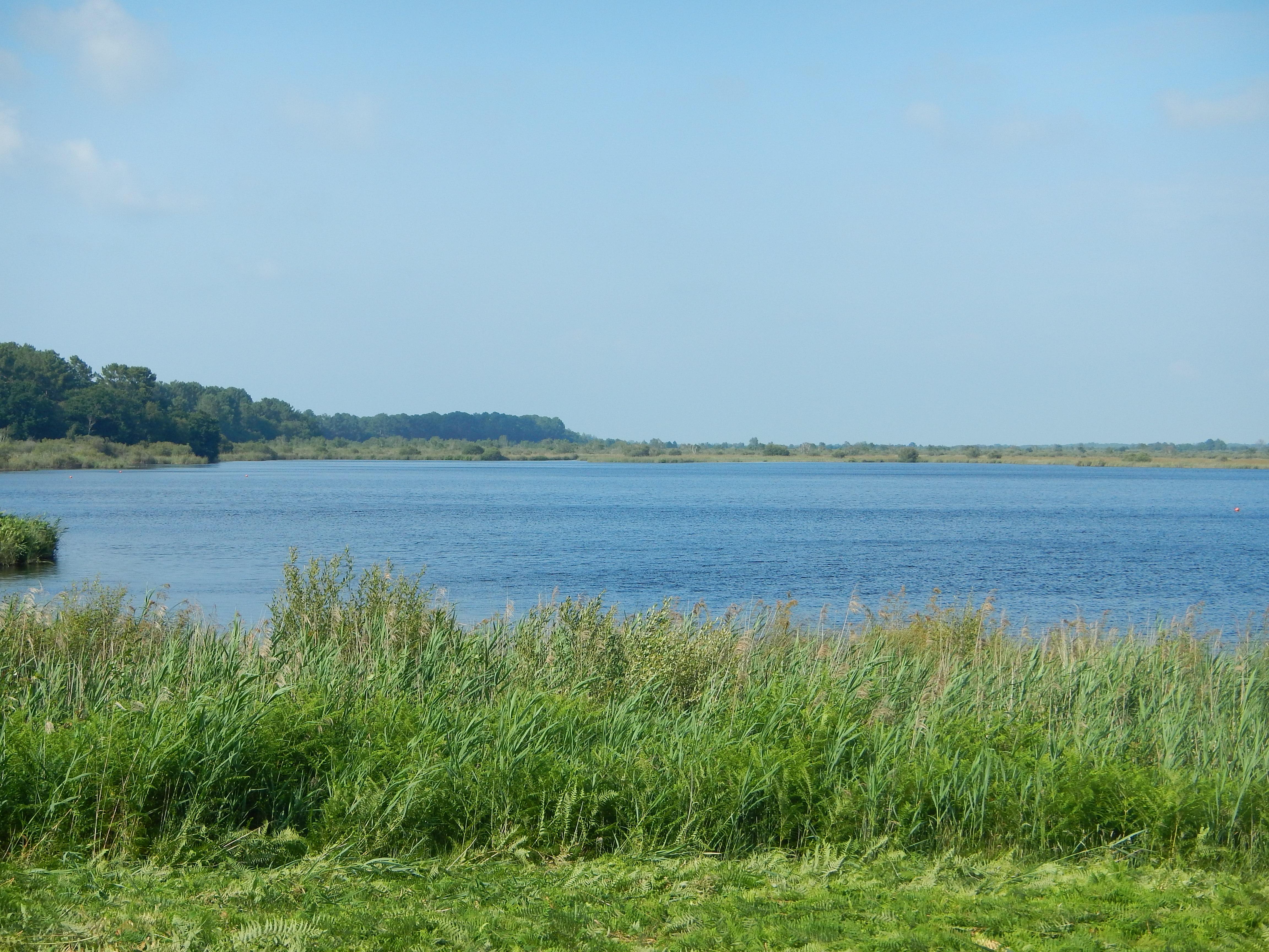 étang de Cousseau2