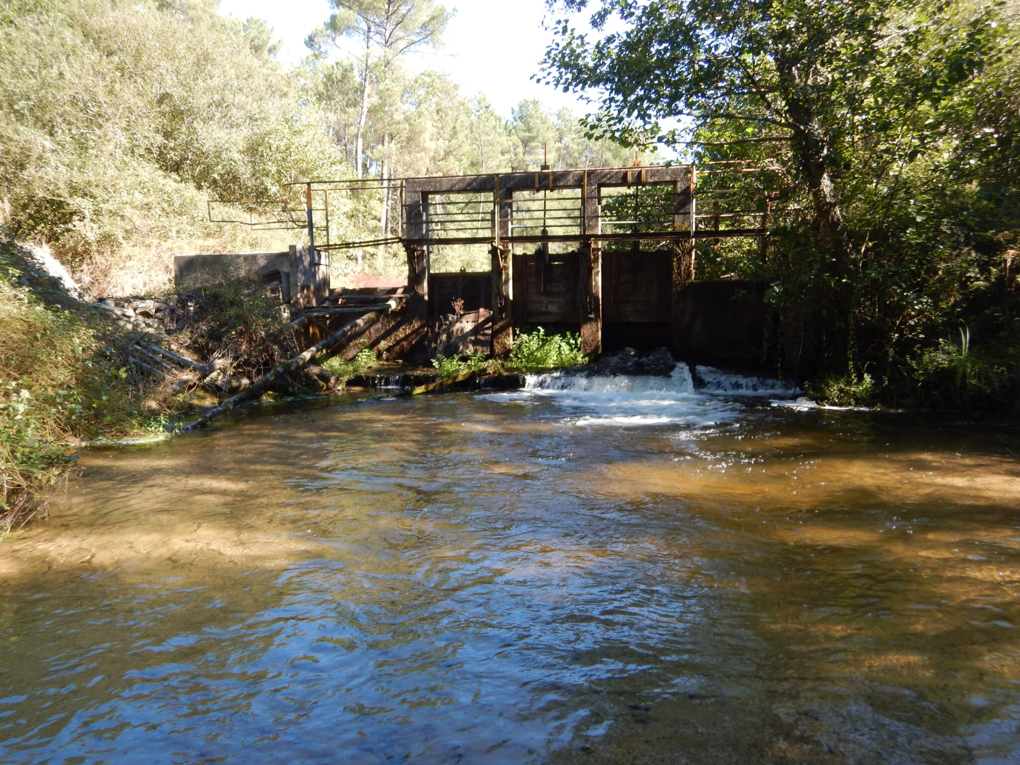 barrage du Graoux affluent leyre-avant effacement