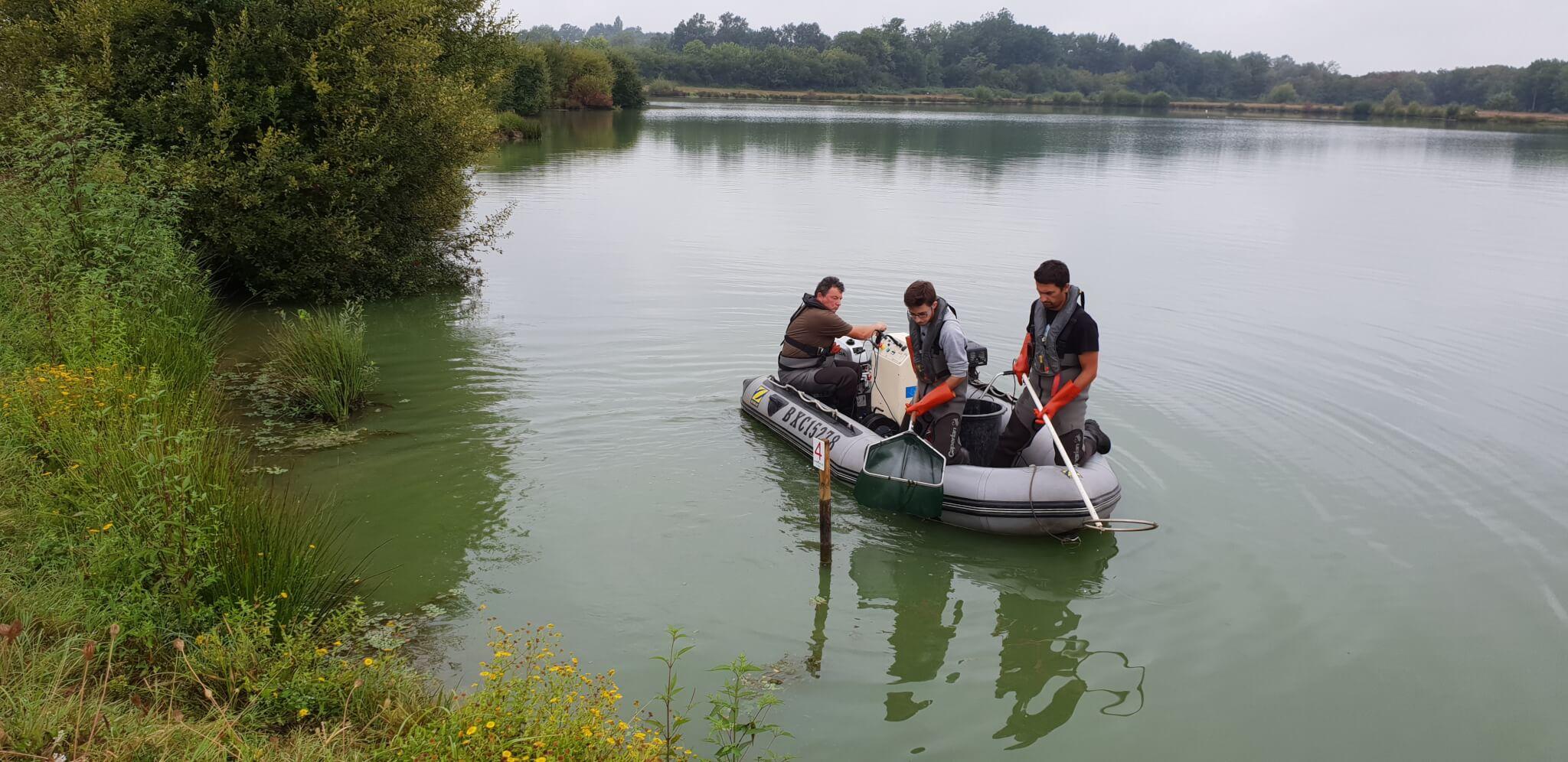 Inventaire pêche électrique (étang de la Petit-Font)