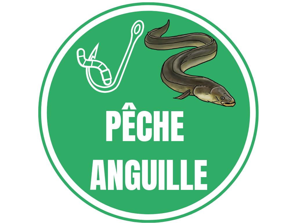 PECHE ANGUILLE