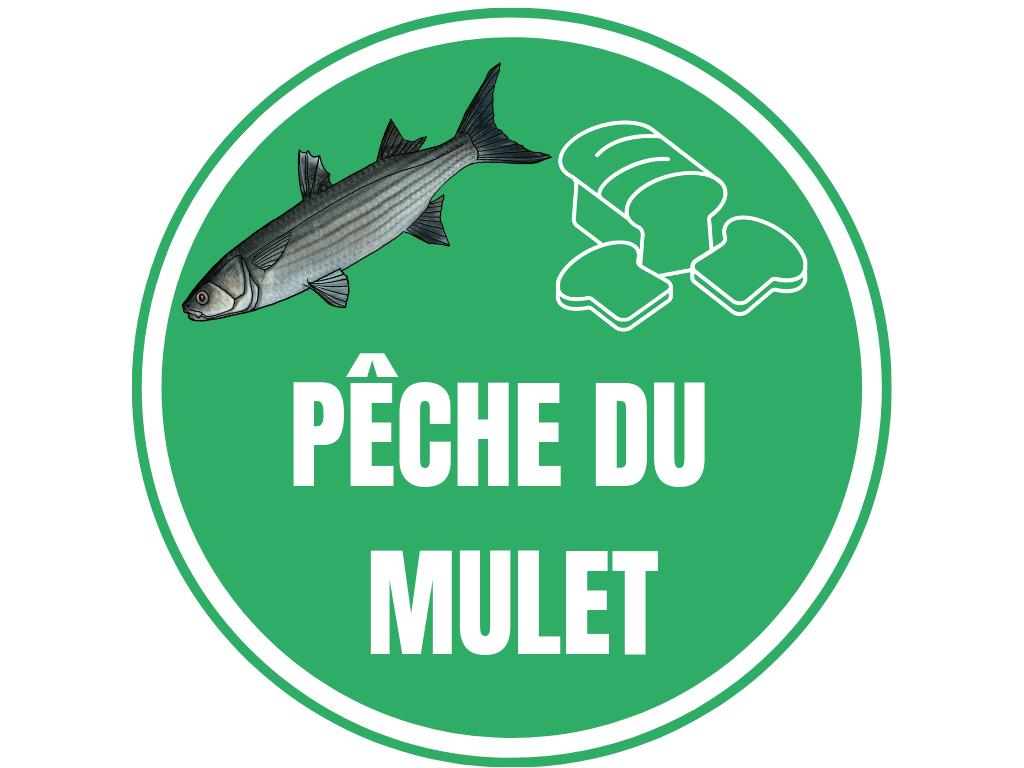 PECHE MULET