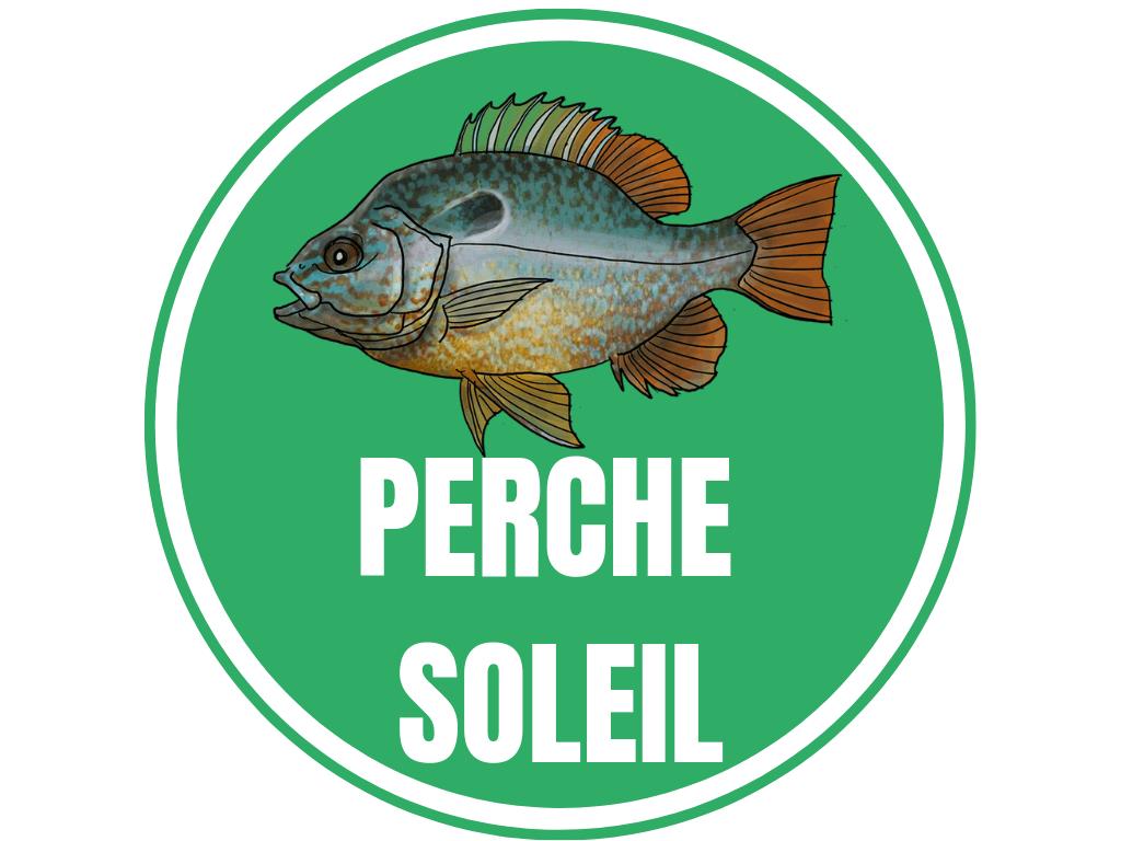 PERCHE SOLEIL