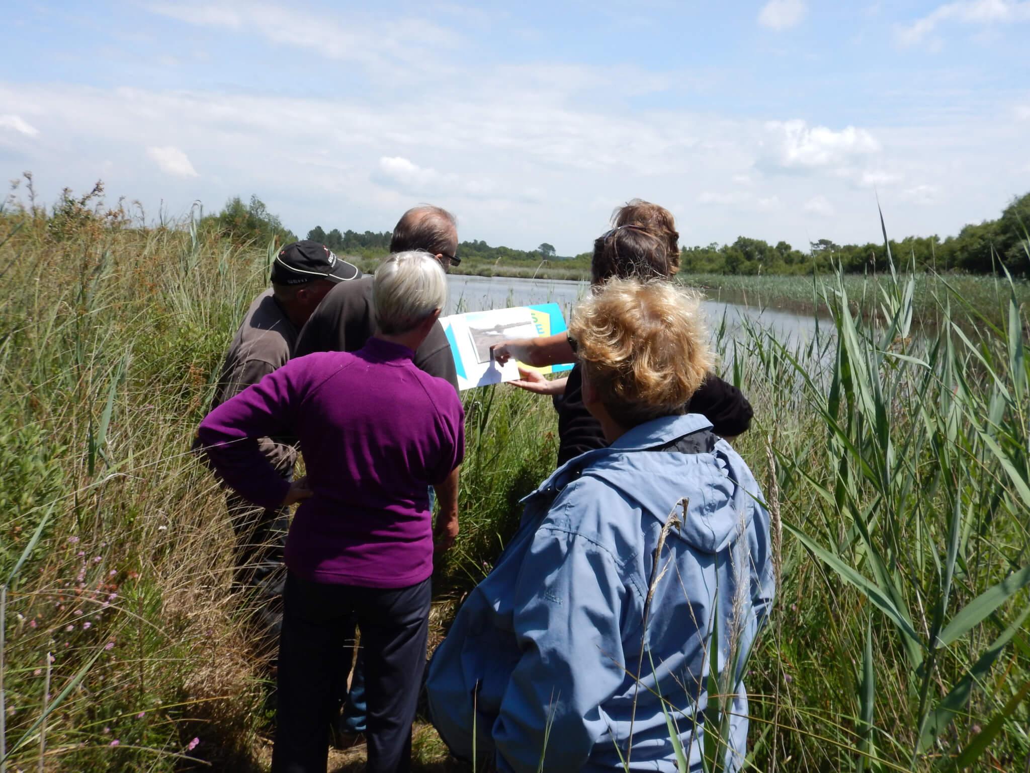 Journée sensibilisation AAPPMA lacs médocains-juin2015 (50)