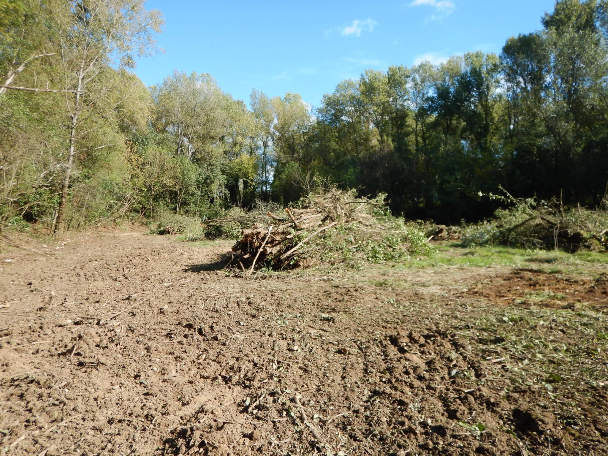 prairie apres abattage arbres st macaire
