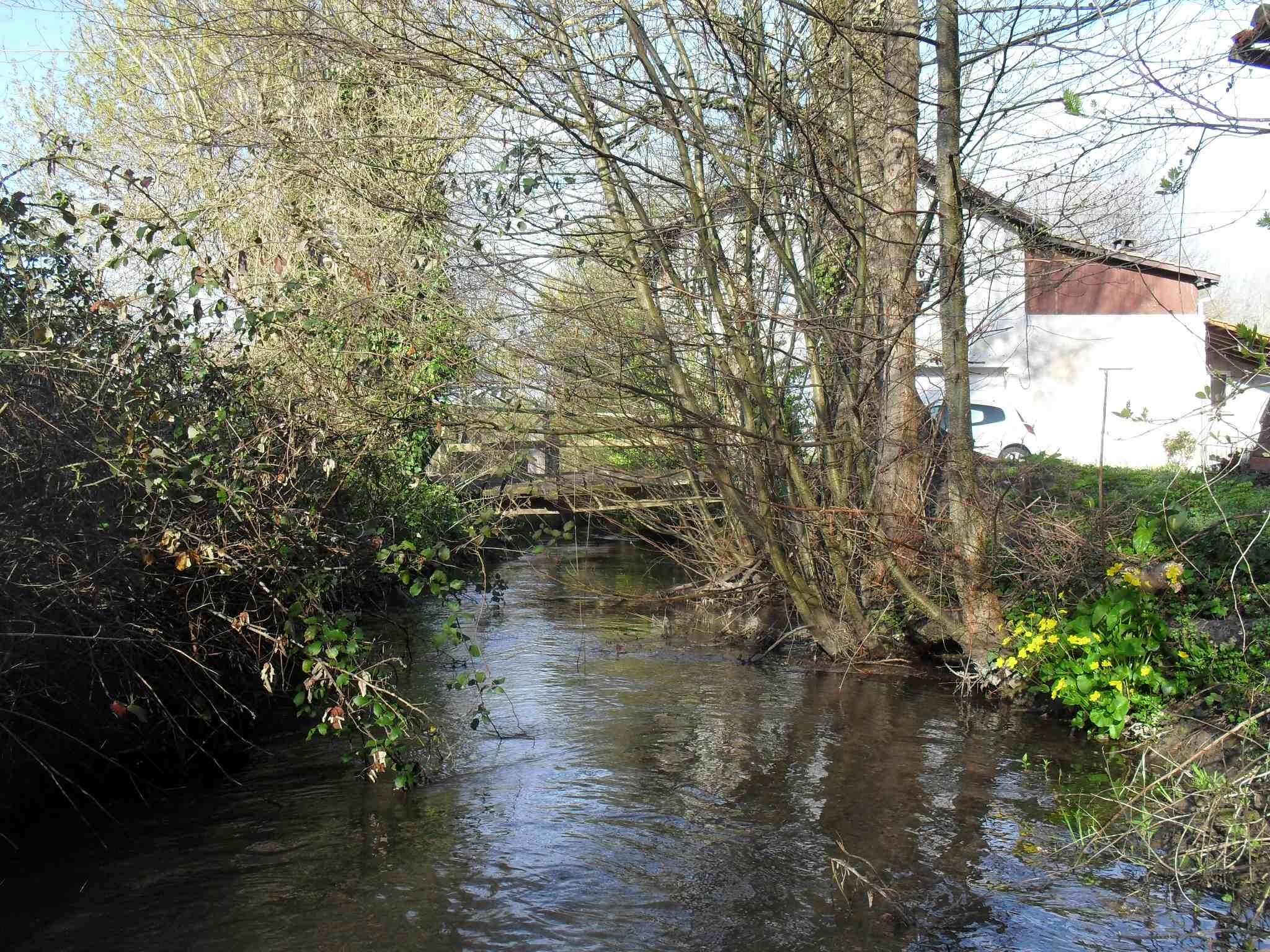 Bras gauche du canal des Moulins en amont du Moulin Neuf © SOCAMA