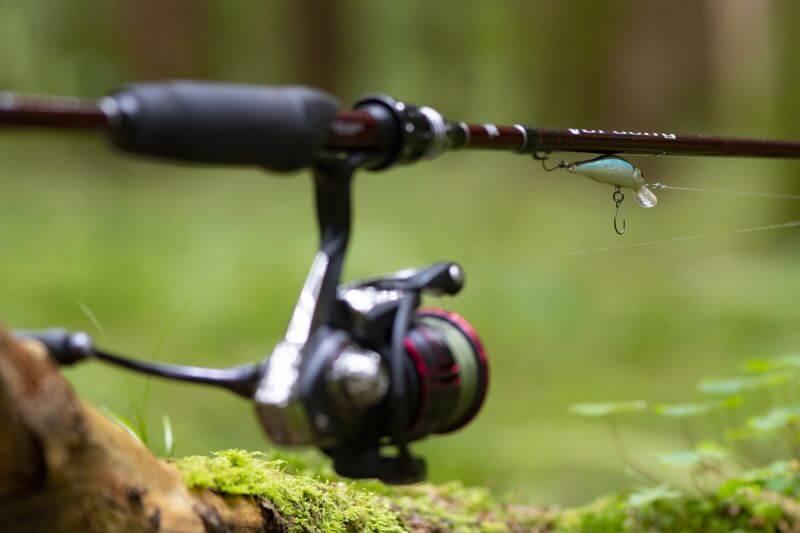 Reprise pêche 11 mai 2020